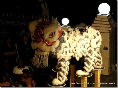 Lion dance 10