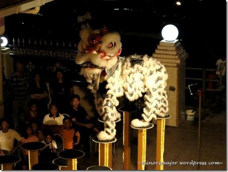 Lion dance 11
