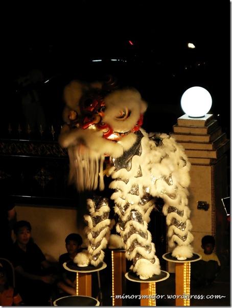 Lion dance 14