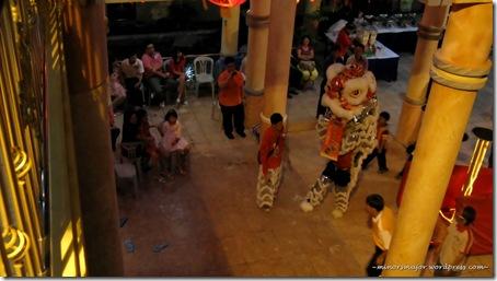 Lion dance 19