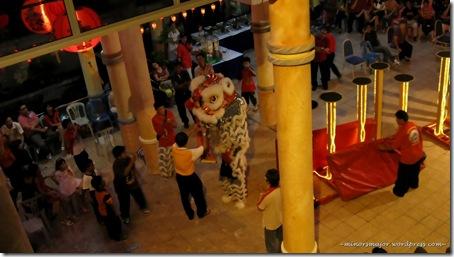 Lion dance 20