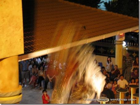 Lion dance 221