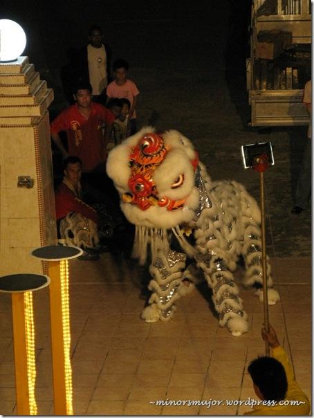 Lion dance 5