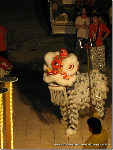Lion dance 6