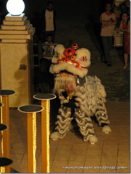 Lion dance 7