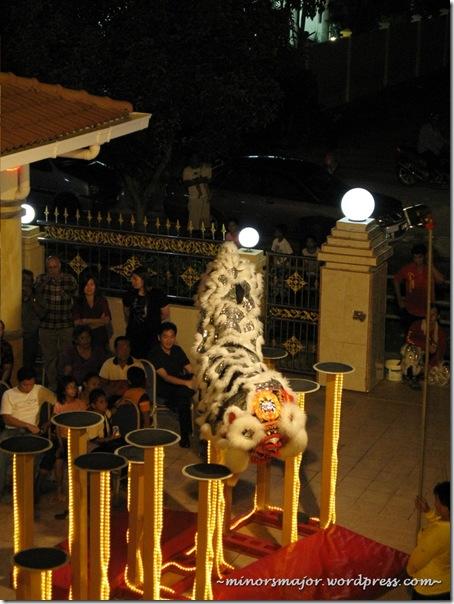 Lion dance 8
